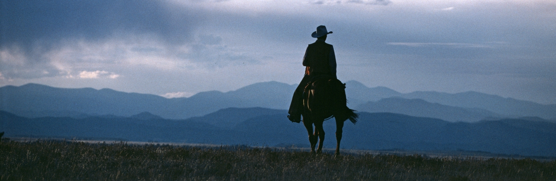 cowboy-hero-H